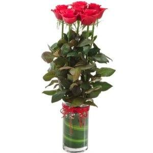 6 Red Roses in a glass vase